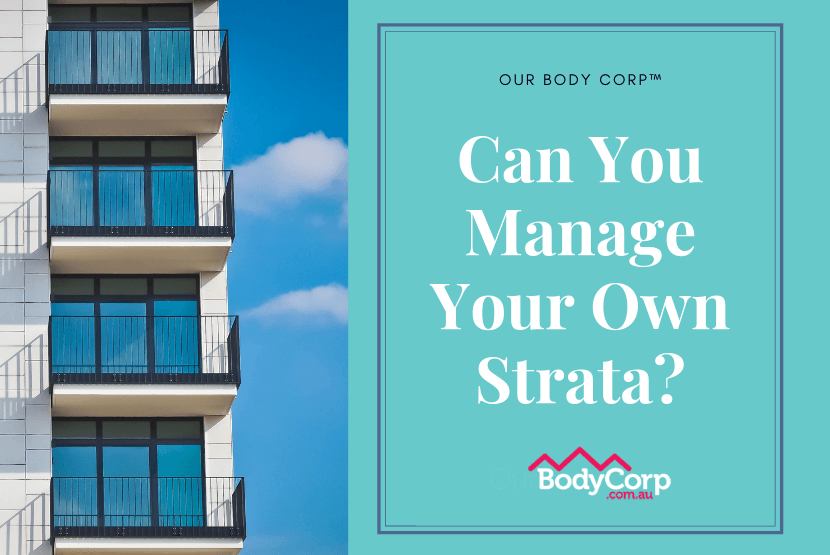 manage your own strata