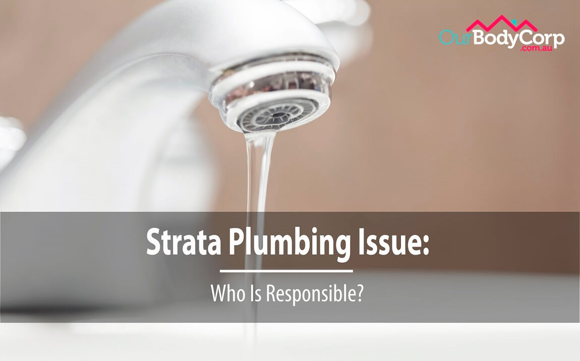 Strata Plumbing Issue: Who Is Responsible?