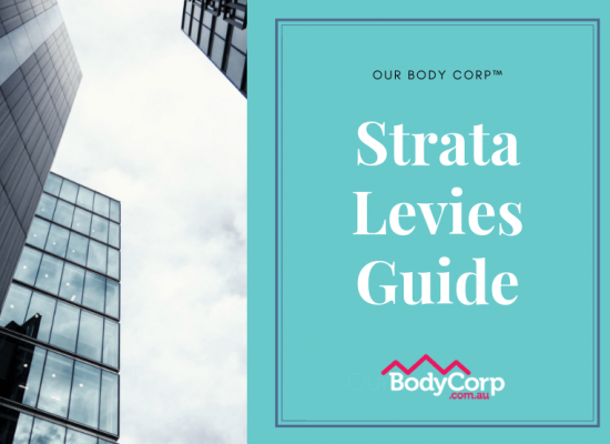 strata levies body corporate