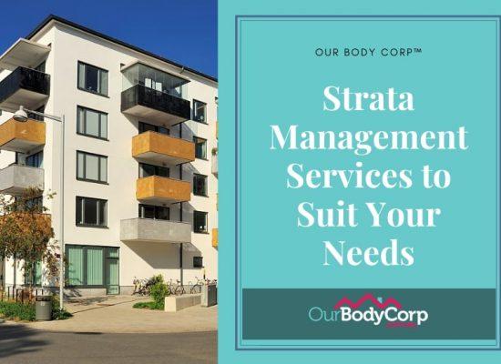 strata management service